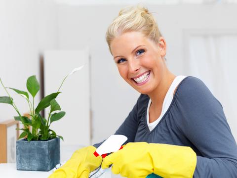 Femme de ménage titre service